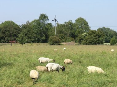 Wind turbine on farm. photo by Hywel Williams. From Wikimedia Commons