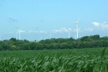Indiana wind farm. Photo by Patrick Finnegan from Lafayette, IN, USA. Wikimedia Commons.