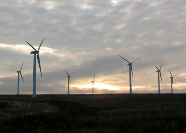 Windfarm at daybreak.