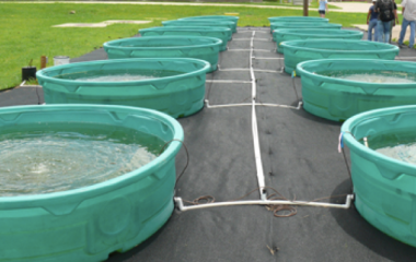 Wastewater tanks in experiment at Rice University.