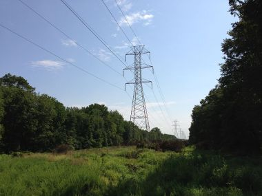 Power lines in the Northeastern US. Photo by Famartin.  Creative Commons Attribution-Share Alike 3.0 Unported license. Wikimedia Commons.