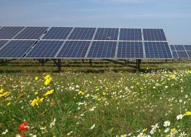 Image: Saxley solar farm in Hampshire (Solarcentury)