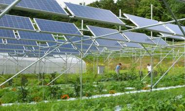 Solar panels have been installed in Minamisoma, Fukushima Prefecture. | Kyodo