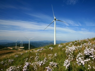 Renewables electricity generation up 13.5% in one year