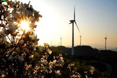 Wind turbines in Qixia, Shandong province, May 5. (Photo/Xinhua)