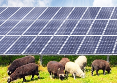 Solar farm approved. SUS-150325-142109001