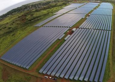 Kauai Island Electric Cooperative's new 12-MW solar array. (Photo By: Shelley Paik/KIUC)