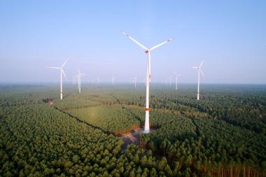 German renewables share hits 33%