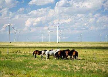 An Xcel project in Colorado (Xcel)