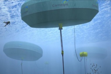 Image Credit: Carnegie Wave Technology