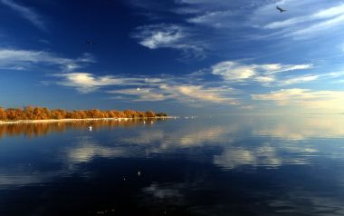 Salton Sea. Released into the public domain (by the author). Wikimedia Commons.