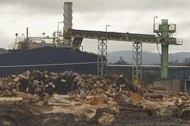 The Southwood sawmill in the Huon Valley was designed more than a decade ago to include a biomass plant. ABC