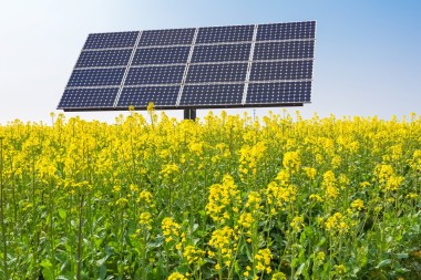 Solar 21 says that the plant will benefit from UK government-backed revenue.