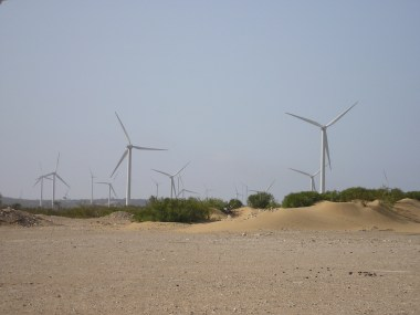Moroccan wind farm. Photo by sqala from Biarritz, France. CC BY-SA 2.0. Wikimedia commons.