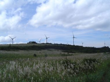 Nunobiki Plateau Wind Farm. Photo from Nunobiki Wind Farm. CC BY-SA 2.0. Wikimedia Commons.