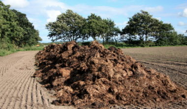 Donegal company turns manure into 90 jobs
