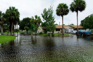 Flooding in Florida community. Photo by Barry Bahler. Public domain - FEMA photo. Wikimedia Commons.