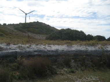 Mount Hersche, Rottnest Island. Photo by Djanga. CC BY-2.5. Wikimedia Commons.