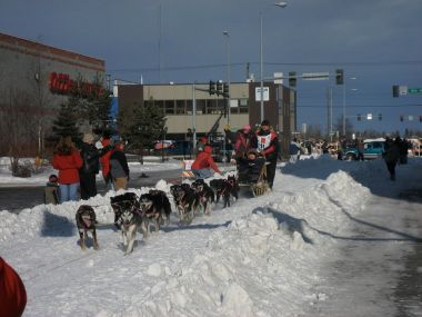 Iditarod start in Anchorage, 2008. Photo by David Weekly from Cupertino, CA. CC BY-SA 2.0. Wikimedia Commons.