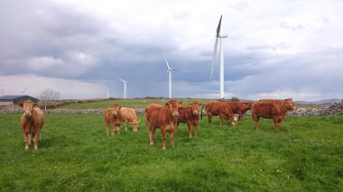 Acres wind farm in Donegal (Element Power)