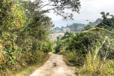 Ghanaian landscape. Image via Shutterstock.