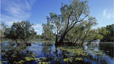 Kakadu National Park in the Northern Territory was also mentioned in the draft report. Getty Images.