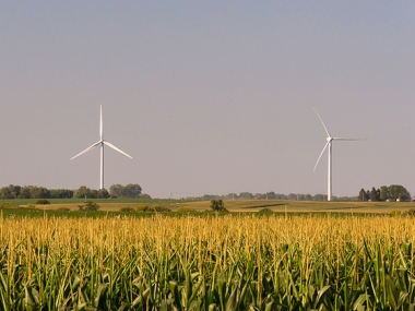 Wind turbines near the small farming town of Nevada, Iowa. (Image by Carl Wycoff)