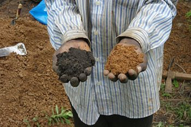 Soil samples in Africa