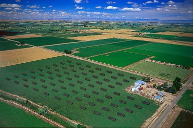 Aerial view of a CPV solar farm in Canyon County, Idaho. Photo by Morgan Solar. CC BY-SA 2.0 generic. Wikimedia Commons.