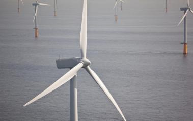Offshore wind turbines. Image: Teun van den Dries / Shutterstock.com