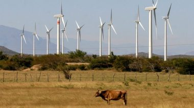 Wind farms like this one on the Isthmus of Tehuantepec in Mexico have faced strong community opposition. L Hernández / Associated Press