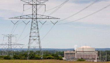 The nuclear industry said it is lobbying FERC. (AP Photo/Nati Harnik)
