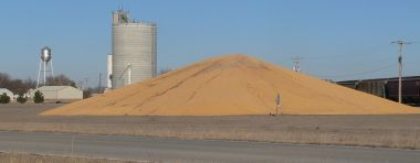 Corn piled near Plymouth, Nebraska. Photo by Ammodramus. CC BY-SA 1.0. Wikimedia Commons.