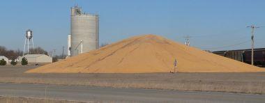 Corn piled near Plymouth, Nebraska. Photo by Ammodramus. CC BY-SA 1.0. Wikimedia Commons.