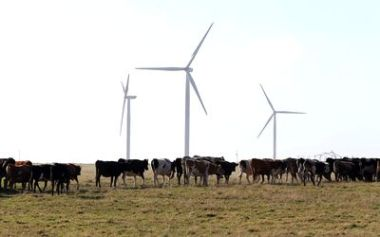 Wind turbines in Africa. Picture: Sunday Times.