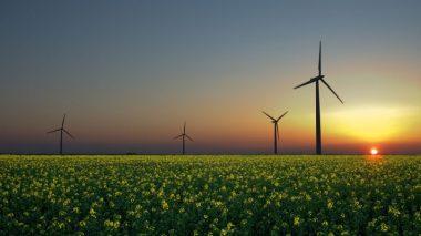 Wind farm in the UK.