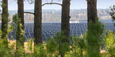 Apple solar array.