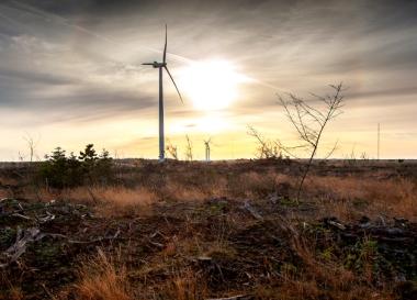 Vestas wind turbines. Vestas photo.