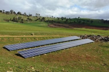 Solar irrigation shaves more than six thousand dollars off this farmer's annual power bill. (Margot Foster).