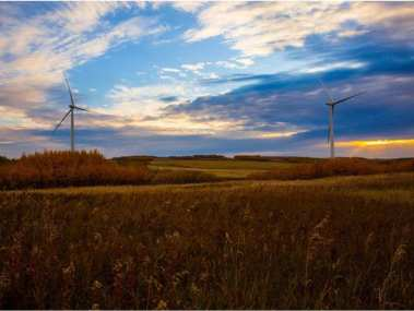 BluEarth Renewables' Bull Creek wind project is offsetting 100% of the energy used by 500 Alberta schools. Photo Supplied.
