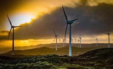 Albany Wind Farm.