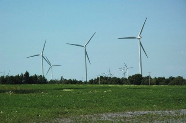 Utility-scale wind and solar infrastructure can affect plant and wildlife habitat. (Sgt bender/Wikimedia Commons)