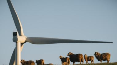 A turbine at the Hornsdale project, near Jamestown.