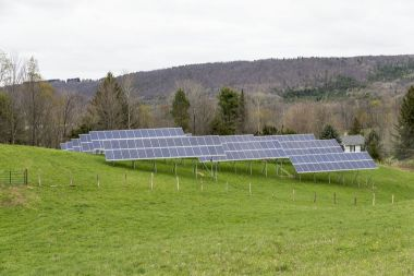 Greenstar solar panels in West Danby. Photo: Diane Duthie
