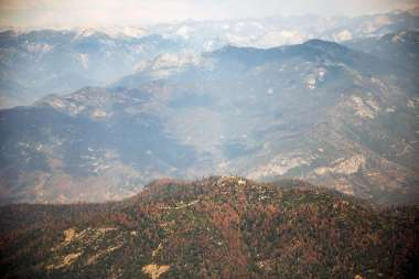 California's dying forests. Photo: Max Whittaker / Prime, Special To The Chronicle.