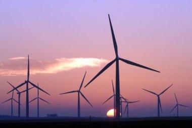 Scottish wind farm (Photo: Ian Rutherford)
