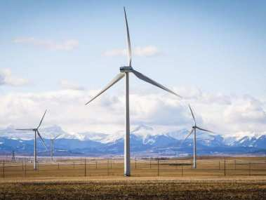 Wind farm near Pincher Creek, Alberta  (Jeff McIntosh / The Canadian Press)