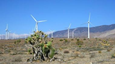 Tule Wind Project (Photo from Avangrid Renewables)