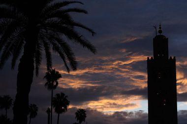 Marrakesh (photo by yeowatzup, CC BY SA, Wikimedia Commons)