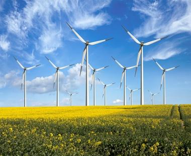 Eco power wind turbines (Photo: Maria Wachala)
